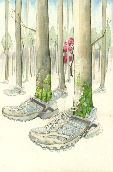 Trees with sneakers in a forest