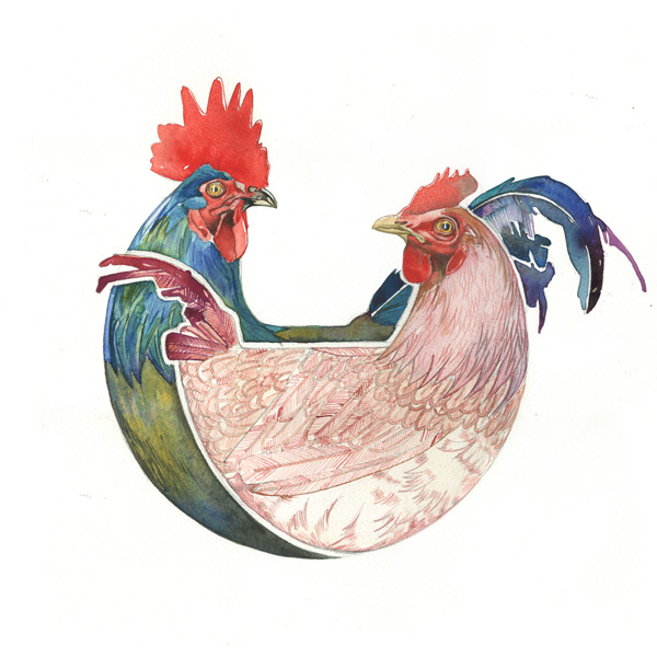 cockerel and hen watercolour illustration/motif