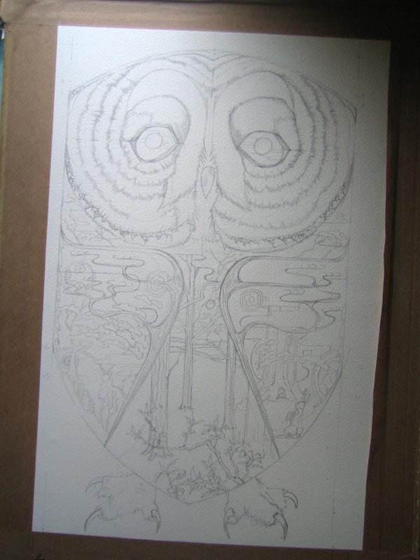 owl drawing in progress