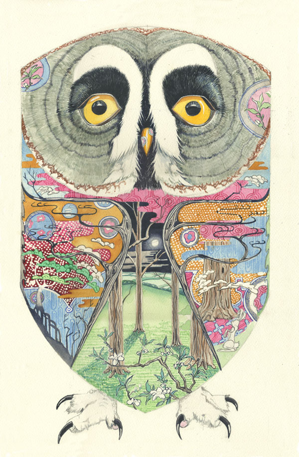 illustration of a great grey owl in watercolour