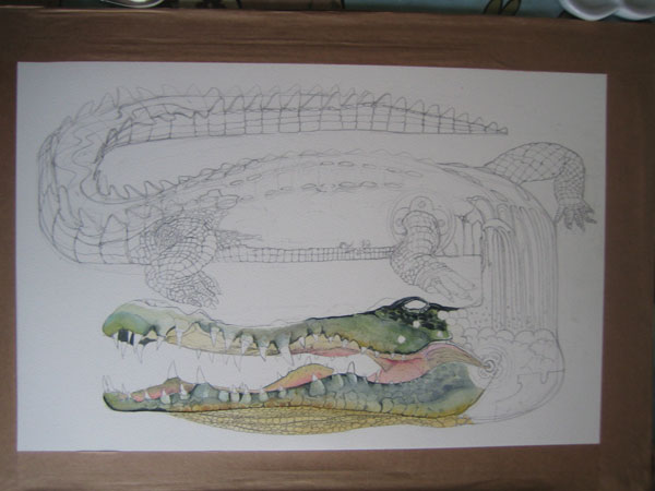 crocodile illustration watercolour