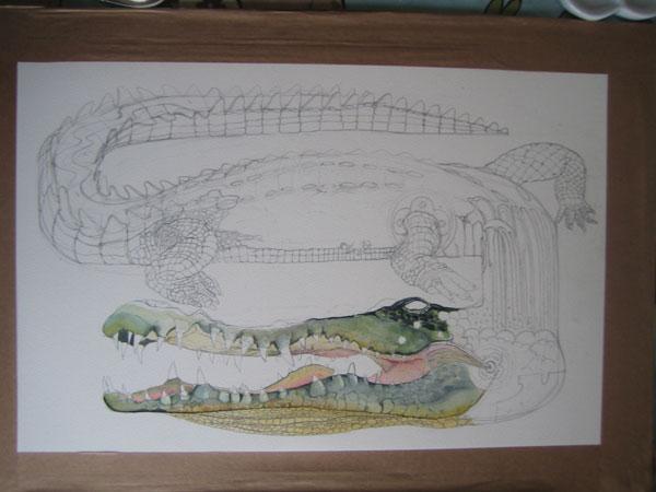 crocodile illustration watercolour