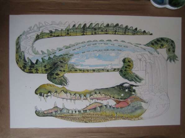 Crocodile illustration in progress