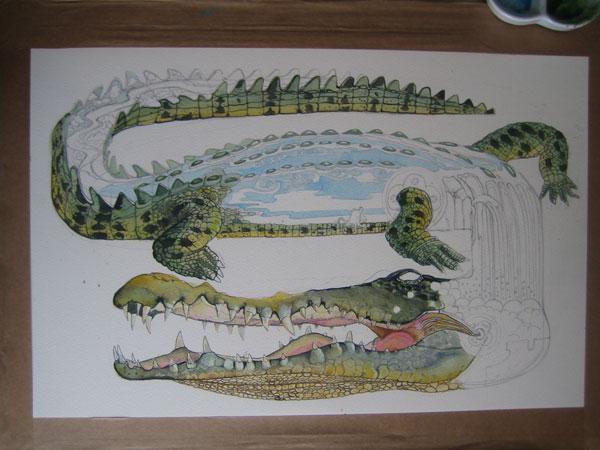 Crocodile illustration in progress