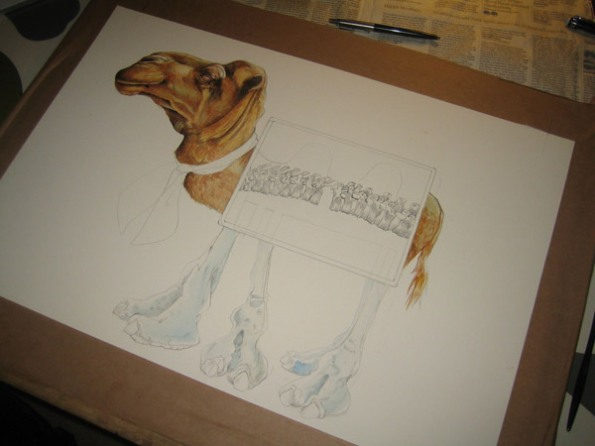 camel watercolour illustration in progress