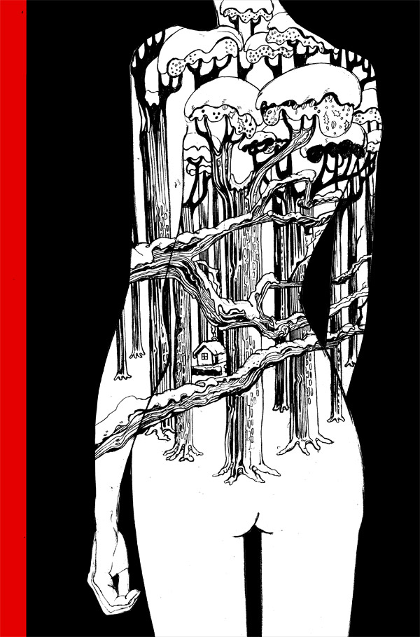 cover illustration- The Bloody Chamber by Angela Carter