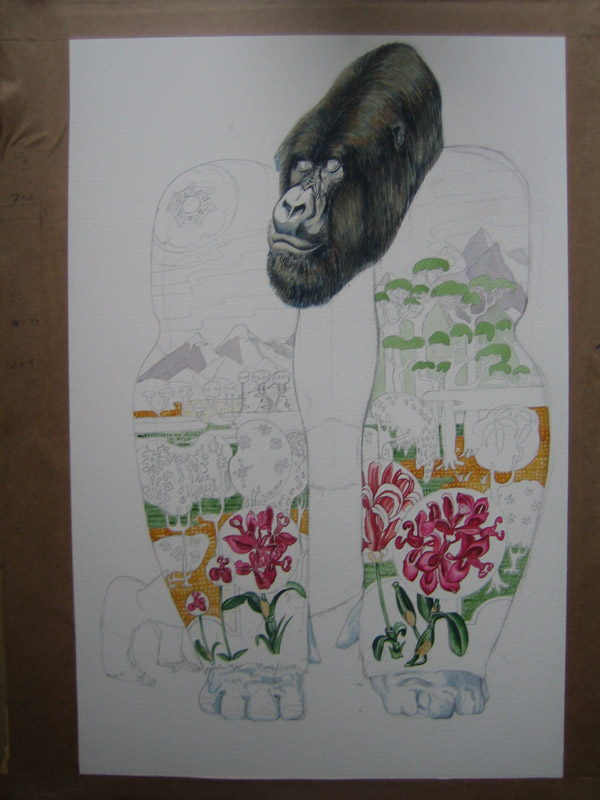gorilla illustration in watercolour, in progress