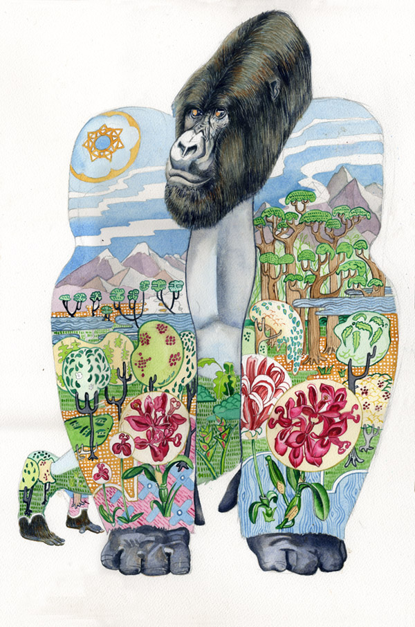Watercolour illustration of a Mountain Gorilla