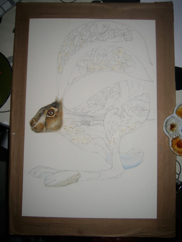 Hare watercolour painting in progress