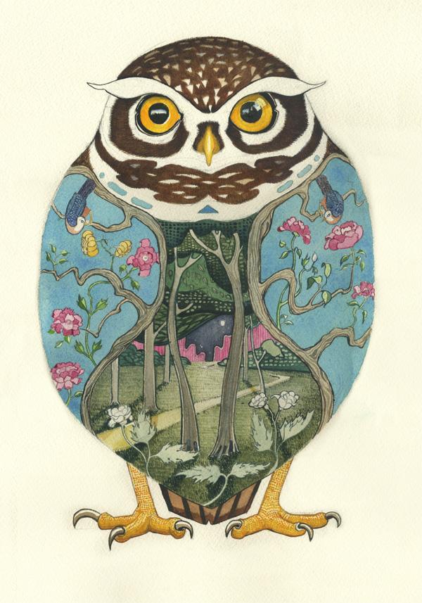 Illte owl watercoour painting bat artist Daniel Mackie