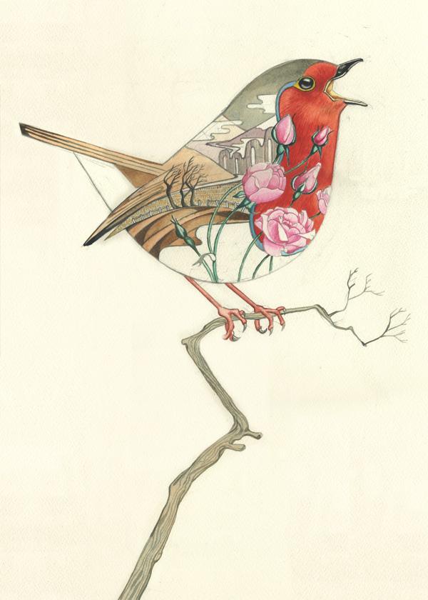 Robin redbreast Watercolour
