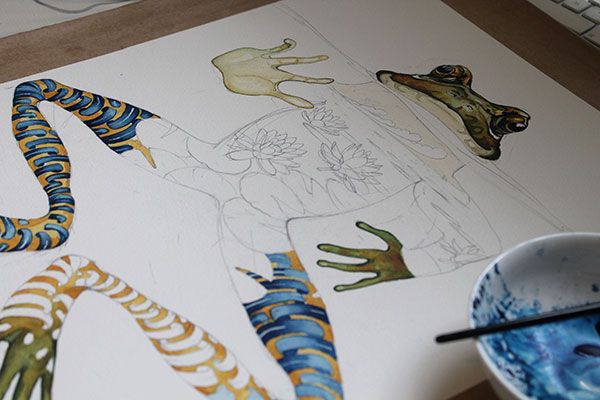 Watercolour painting of a frog by Daniel Mackie, in progress